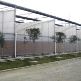 A Sawtooth Greenhouse For Flowers/Vegetable