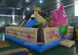 Durable and Reliable Inflatable Bouncies Castle with Competitive Price (A053)