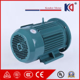 High Efficiency Synchronous Permanent AC Electric Motor