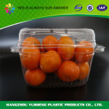 Disposable Packaging Box for Fruit