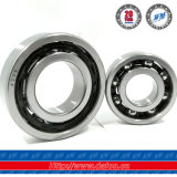 6206-2RS C3 Polyamide Cage Motorcycle Parts Deep Groove Ball Bearing