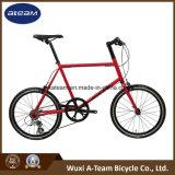 High Quality 20 Inch Bicycle /Shimano Altus Mini Bike (MINI VELO1)