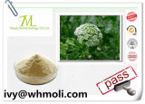 High Purity Plant Extracts Osthole CAS No. 484-12-8