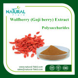 Factory Supply Hot Sale Wolfberry Extract Powder