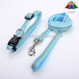 Pet Collar and Leash Supply, Pet Harness Accessories, Factory Direct Sale Pet Products