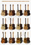 Fast Delivery Top Solid Classical Guitar with Discount