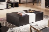 Modern Style Functional Wooden Coffee Table (CJ-2032)