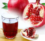 Pomegranate Juice Concentrates with High Quality