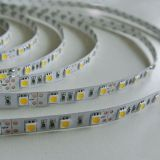 Waterproof SMD5050 12V LED Strip with Adhesive Back