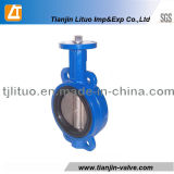 Ductile Iron Body Butterfly Valve with Ss304 Stem