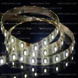 Brand Flexible LED DC12V SMD3528 Bi-Color Dimmable LED Strips Light