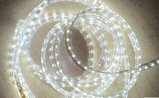 Ce EMC LVD RoHS Two Years Warranty High Voltage 110V/220V White LED Rope
