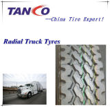 Truck and Bus Radial Tyre 13r22.5