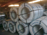 Export to Bulgaria Dx 51 Galvanized Steel Coils