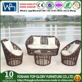 Wicker Outdoor Furniture Sofa Set PE Rattan Sofa (TG-013)