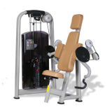 Excellent Commercial Fitness Equipment / Biceps Curl (SR06)