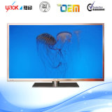 32 Inch LCD  TV  LED  TV  Curved  TV
