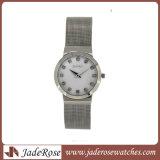 Fashion Watch Mesh Band Watch Watchproof Watch