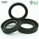Double Lip Oil Seals Used in Automotive Engine Applications