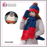 2015 Winter Warm Wool Hat Scarves Gloves Three-Piece Set (SNSJT001)