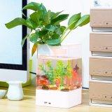 USB Desktop Acrylic Fish Tank Mini Aquarium