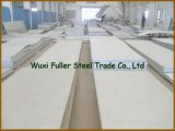 Hot Rolled 304 Stainless Steel Sheet with Competitive Price