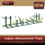 Hot Sale Outdoor Fitness Equipment (12170C)