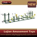 Hot Sale Outdoor Fitness Equipment (12170C)