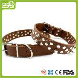 River Dog Collar Pet Collar Pet Products