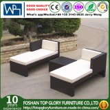 Garden Furniture Lounger Sofa Hotel Furniture Patio Furniture Sets (TG-JW12)