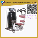 Gym Machine Equipment / Rotory Torso