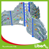Kids Climbing Structure (LE. PP. 010)