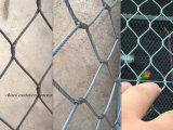 Stainless Steel Net/Webnet/Wire Mesh/Wire Cioth