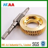 Stainless Steel Worm Shaft, Brass Worm Gear Made in China
