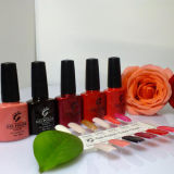 Hot Sales Excellent Toughness Professional Gel Polish