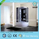Multifunction Grey Glass Steam Massage Complete Shower Room (BLS-9846)