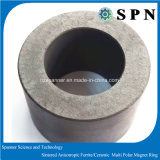 Anisotropic Ferrite Magnet Multipole Ring for Motor