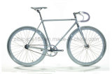 700c Hot Sale Single Speed Fixed Gear Bike (ZLF-2001S)