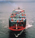 Container Shipping Service (LCL/FCL/Consolidation) for Europe Shipping