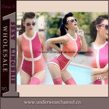 Wholesale Fashion Sexy Mix Color Teddy Bathing Bikini Swimwear (TBLSN163)