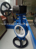 Cast Iron Body PTFE Seat Wafer Butterfly Valve with Worm Gear