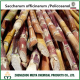 Natural Sugar Cane/ Policosanol Extract with Octacosanol 50%-90%