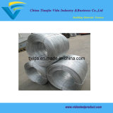 Galvanized Wire (600kgs per coil)