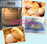 Full Automatic Poultry Incubator/Chicken Egg Incubation Sale/Egg Hatching Machine