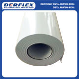 Pet Film for Roll-up Banner (Matte)