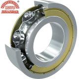 P6 Standard Gcr15 Ball Bearing (6038-6064zz)