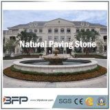 Flamed/Bush Hammered Bluestone/Granite Paving Stone for Garden Outdoors