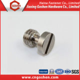 High Quality Stainless Steel Flat Countersunk Head Slot Screw