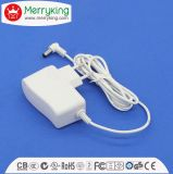 12V1000mA AC/DC EU Plug Power Adapter with Ce, GS Certificate