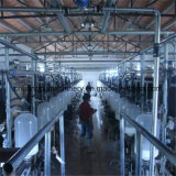 Milking Parlor Dairy Farm Machinery, Milking Machines